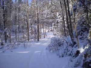 snowmobile-trail